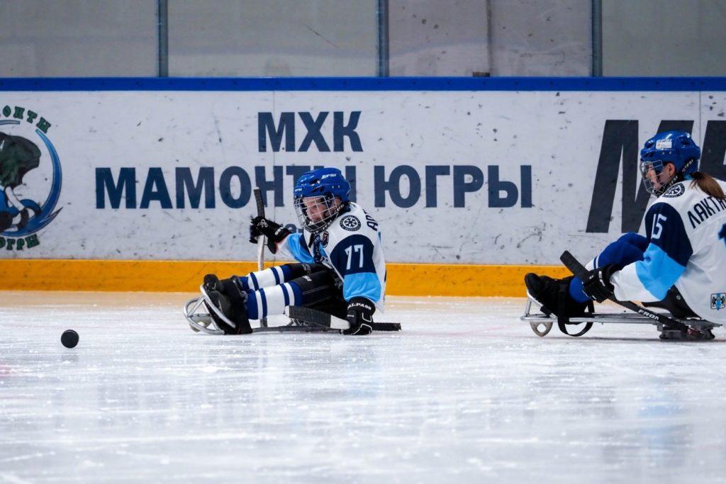 «Мамонтята Югры» - Сборная Новосибирской области