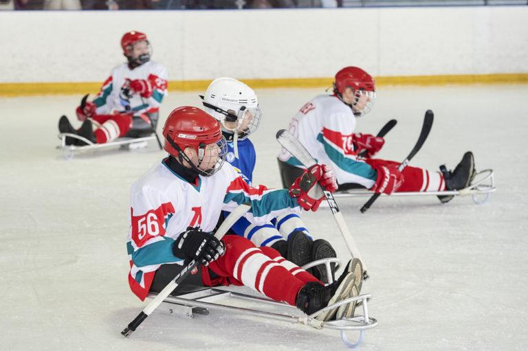 В Пензенской области состоялся первый межрегиональный следж-хоккейный турнир «Хоккей без границ»