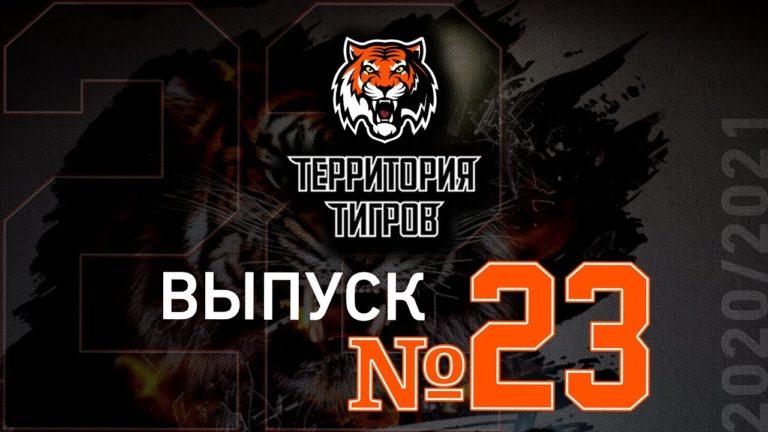 «Территория Тигров» об адаптивном хоккее