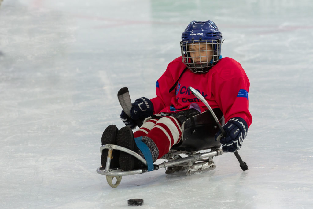В Перми может появиться детский следж-хоккей