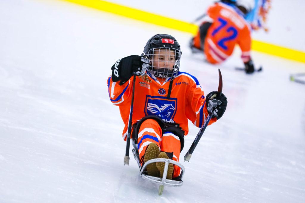 Адаптивный хоккей в России получит поддержку от Фонда президентских грантов